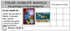 brevets habileté manuelle3
