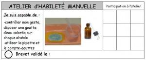 brevets habileté manuelle4