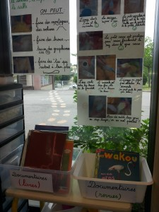 objectifmaternelle_coin sciences (5)