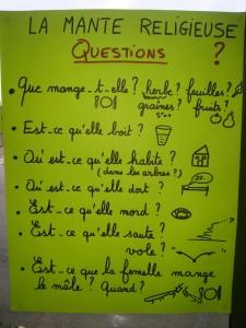 03-Questions 1